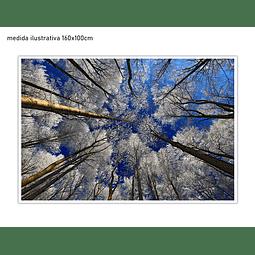 Quadro Decorativo Blanca - Alteração de valores por medidas