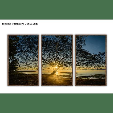Trio de Quadros Separados Native  - Alteração de valores por medidas
