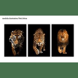 Trio de Quadros Metacrilato Wilding - Alteração de valores por medidas