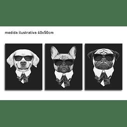 Trio de Quadros Separados Dogs - Alteração de Valores por medidas