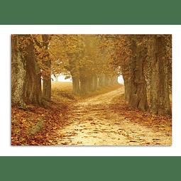 Quadro Metacrilato Passage  - Alteração de valores por medidas