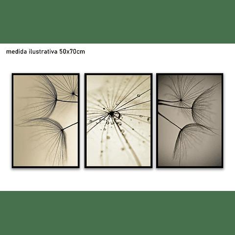 Trio de Quadros Separados Fiorella - Alteração de valores por medidas