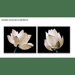 Conjunto de Quadros Separados Stella - Alteração de valores por medidas