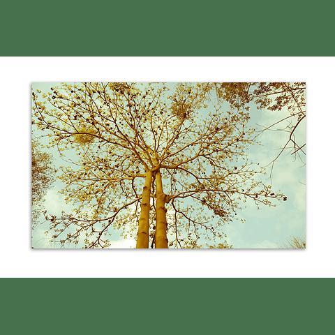 Quadro Metacrilato Believer - Alteração de valores por medidas
