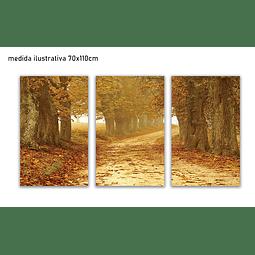 Trio de Quadros Metacrilato Kimberly - Alteração de valores por medidas