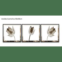 Trio de Quadros Separados Kaira com Paspatur de Espelho - Alteração de valores por medidas