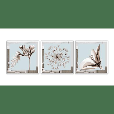 Trio de Quadros Artifice com Paspatur de Espelho  - Alteração de valores por medidas