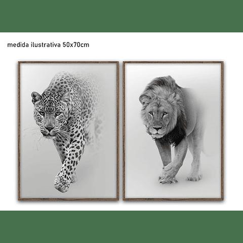 Conjunto de Quadros Animals - Alteração de valores por medidas