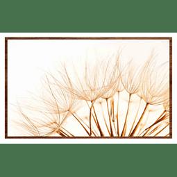 Quadro Rosanna- Alteração de valores por medidas