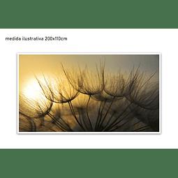 Quadro Decorativo Cindy -  Alteração de valores por medidas