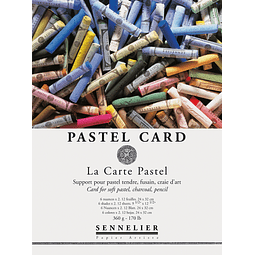 PASTEL CARD - Pliego Aterciopelado 60 x 50 cm (3 colores)