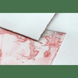 25 láminas 24 x 30 cm - Papel flores de algodón 250 g (Serigrafía e Impresión)