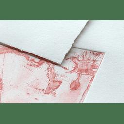 Rollo 1,3 x 10 m de Papel de flores de algodón 250 g (Serigrafía e Impresión)