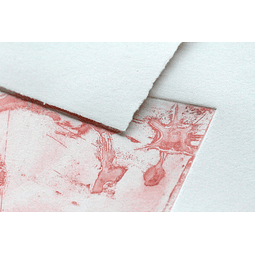 10 láminas 24 x 30 cm - Papel flores de algodón 250 g (Serigrafía e Impresión)