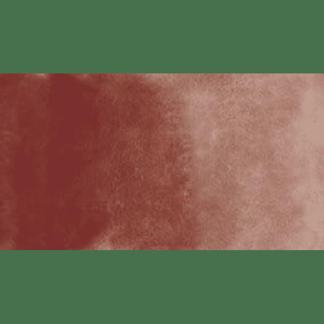 W021 - Brown Madder