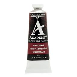 RAW UMBER - 37 ml