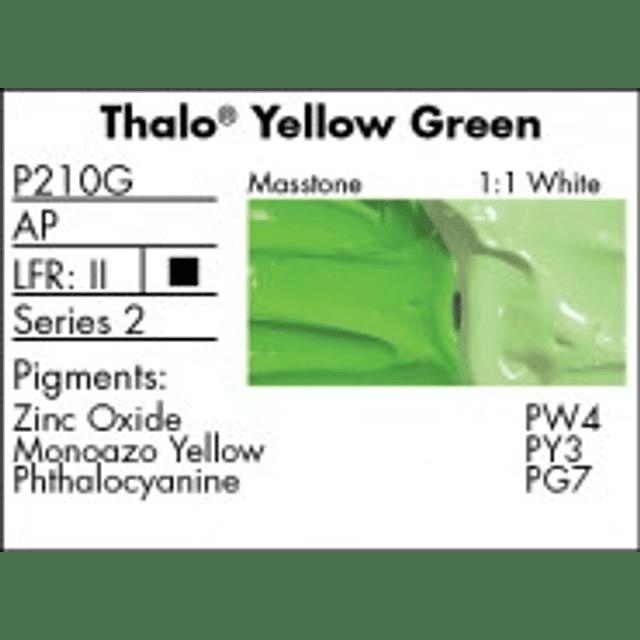 GRUMBACHER - PRETESTED OIL (37ML) THALO AMARILLO VERDE