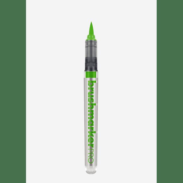 253 - Grass