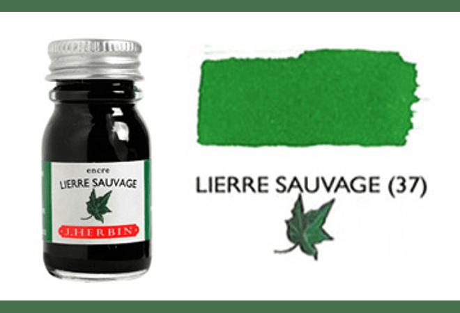 Tinta caligráfica, frasco de 10 ml. lierre sauvage