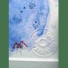 Color Marine Petroglyphs