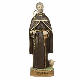 Santo Antão 22 cm