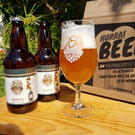 Pack Cerveza PuCobre + Copa