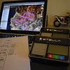 Curso GPS + Entrenamiento Ritoque