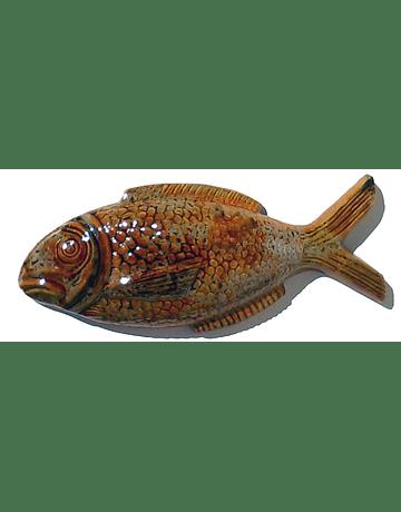 Grand mur de poisson