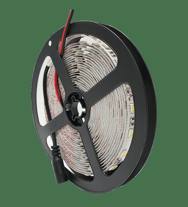 WTI-012 TIRA 300 LEDS 5050 5M 72W IP20 BF