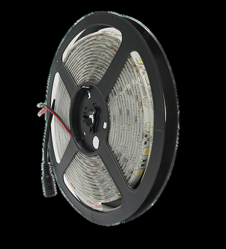 WTI-004 TIRA 300 LEDS 5050 5M 72W IP65 BC
