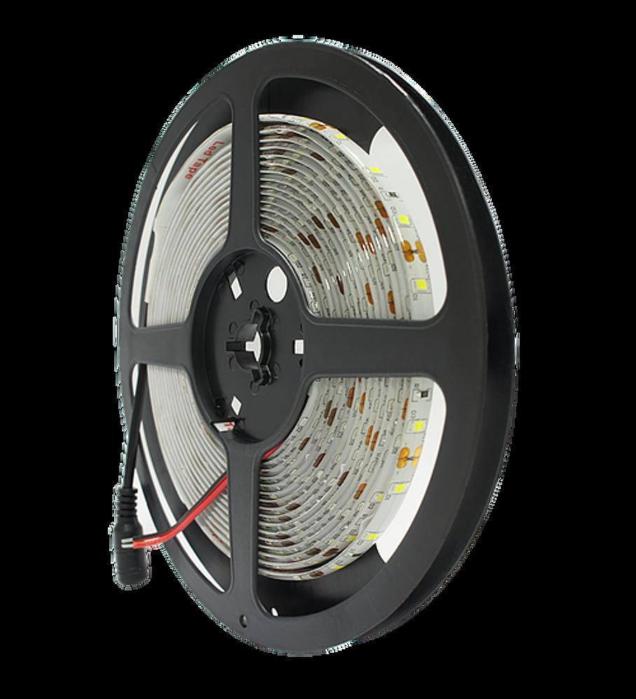 WTI-005 TIRA 300 LEDS 2835 5M 24W IP20 BF