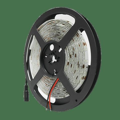 WTI-008 TIRA 300 LEDS 2835 5M 24W IP65 AZUL