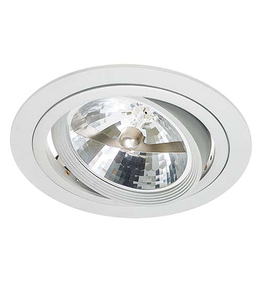 DOWNLIGHT BASIC DIRIGIBLE PARA AR111 06-2489-01