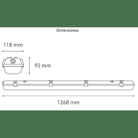 GAMMA T8 LED L5479-530 2X16W 100-240V 60K GR LAMP