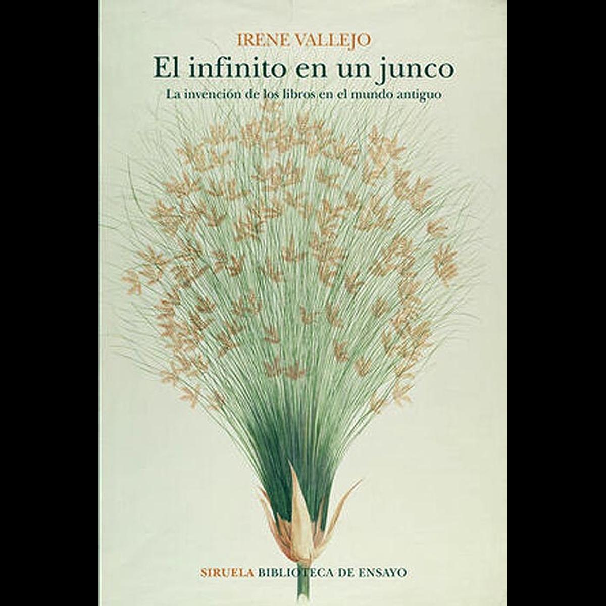 INFINITO EN UN JUNCO, EL : LA INVENCIÓN DE LOS LIBROS EN EL MUNDO