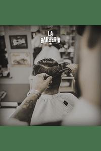 Membresía anual: Corte de cabello