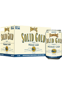Founders Solid Gold - Pack 6 Latas 355ml
