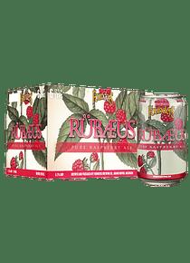 Founders Rübaeus - Pack 6 Latas 355ml