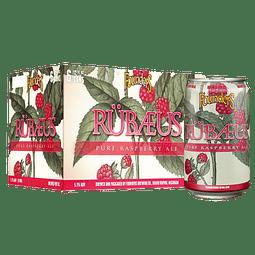 6x Cerveza Founders Frutal Rübaeus 355cc