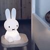 Miffy First Light