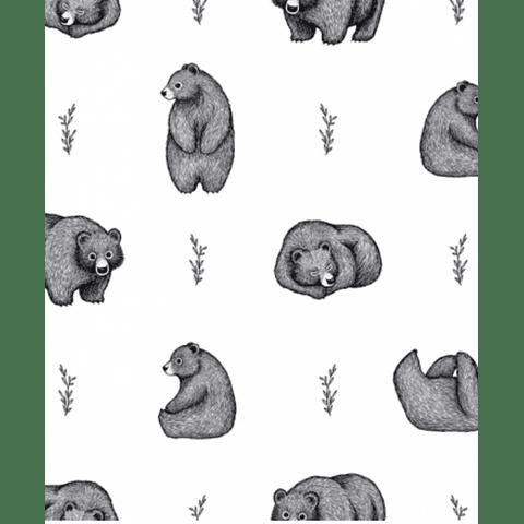 Papel de parede - Romanian Bears