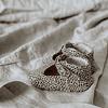 Lilly Cheetah