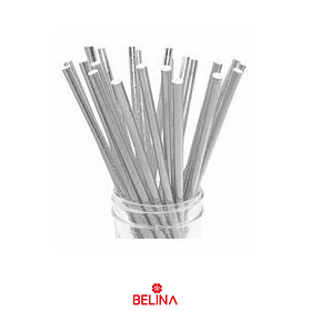 Bombillas plata 25pcs 6x197mm
