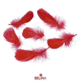 Plumas decorativas rojo 50pcs