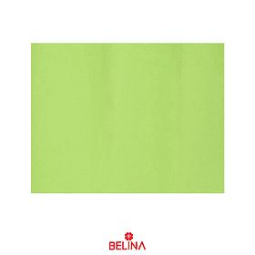 Papel Seda 10pcs 50x66cm Verde