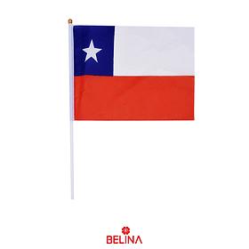 Bandera De Chile Pequeña 20x28cm