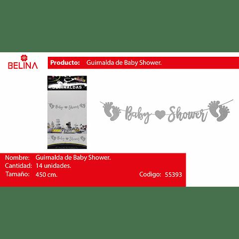 Guirnalda baby shower plateada 450cm 14pcs