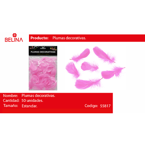 Plumas Decorativas Rosa 50pcs