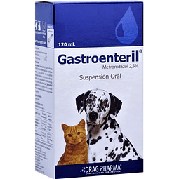 GASTRONTERIL 2,5% 120 ml
