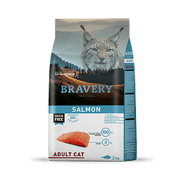 CAT SALMON ADULT 2 KG